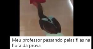 galinhaaa1