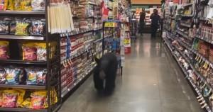 Urso-é-apanhado-a-passear-em-supermercado-nos-EUA