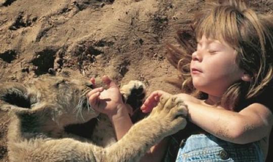 Resultado de imagem para crianças brincando com animais