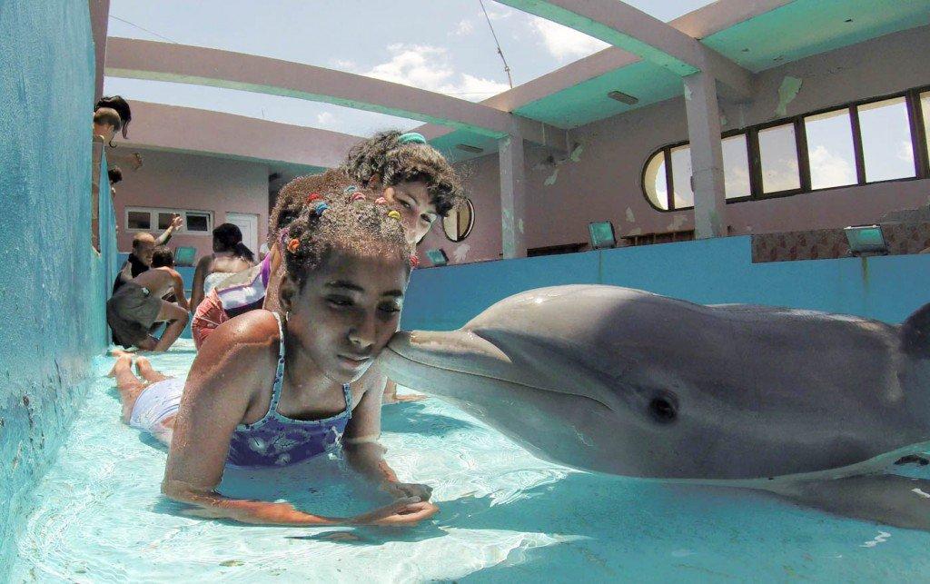 26-de-maio-criança-recebe-um-beijo-de-um-golfinho-após-uma-sessão-de-terapia-no-Parque-Nacional-em-Havana-1024x643