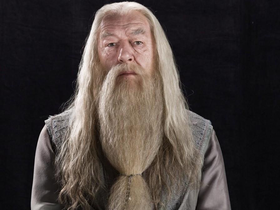 Albus-Dumbledore-Wallpaper-hogwarts-professors-32797138-1024-768