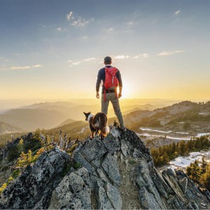 campingwithdogs4