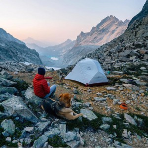 campingwithdogs9