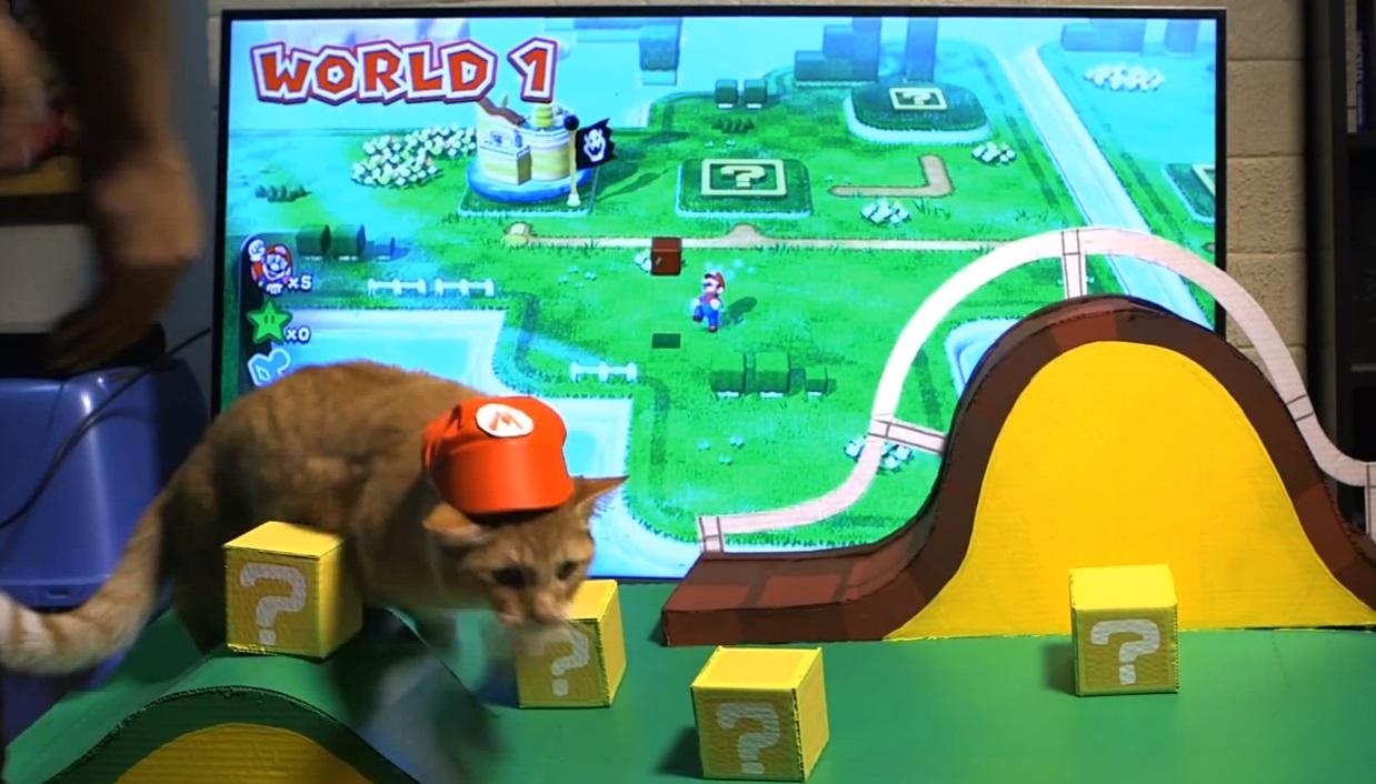 Dono tenta transformar gato em personagem do game Super Mario 3D World