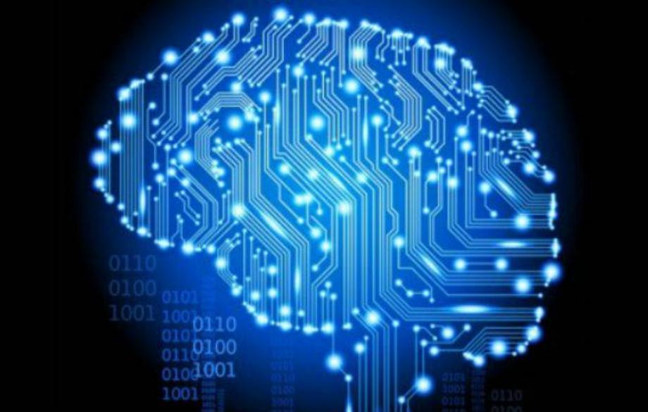 Cérebro processador | O cérebro não processa informações