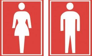 feminino e masculino