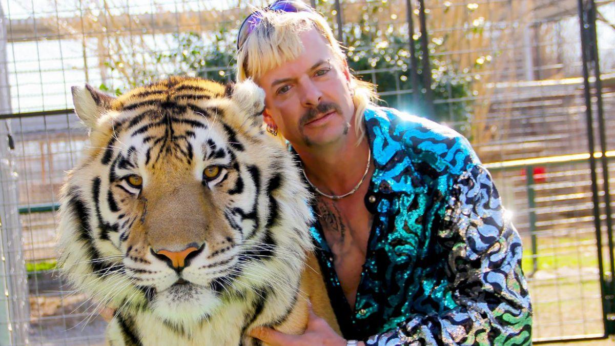 mafia dos tigres divulgacao